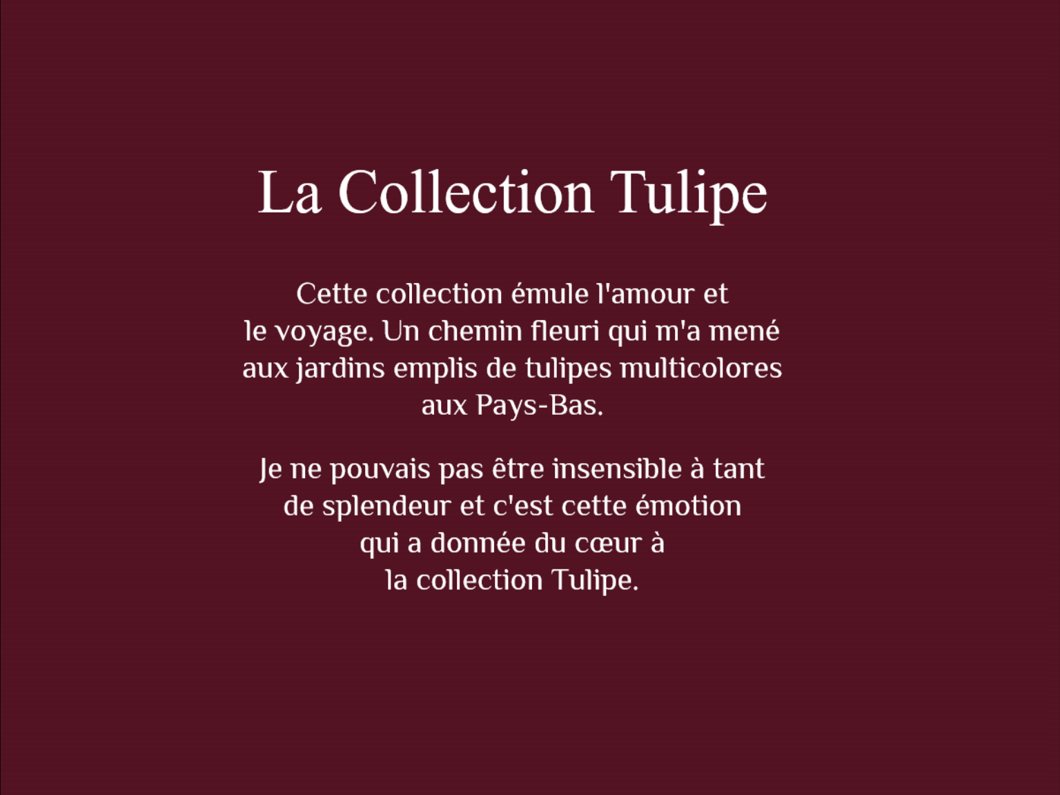 La collection tulipe 13